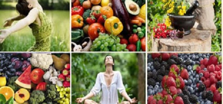 foods to increase immune system